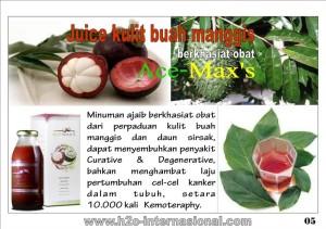 ACE-MAXS+-+5-1024x723